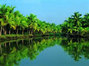 "This is an example of Kerala's lush ""backwaters"""