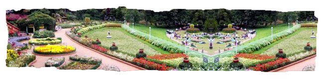 Botanical Gardens: Ooty